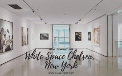 Neue Ausstellung in New York